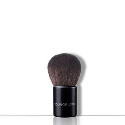 Picture of Small Kabuki Brush